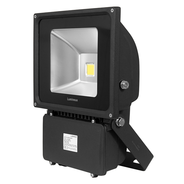FL125 Floodlight 80W Black  Photocell