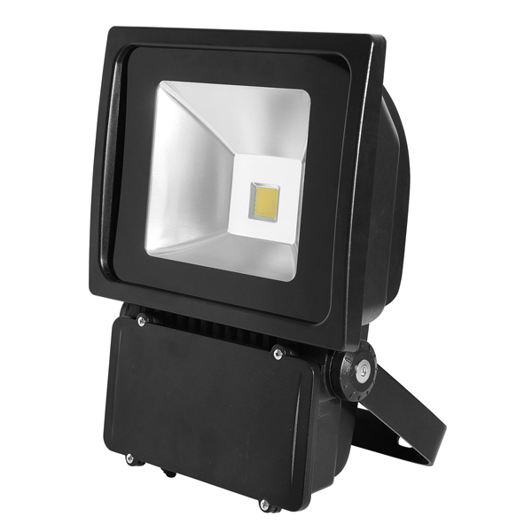 Bartley Floodlight 12-24V DC 80W Black