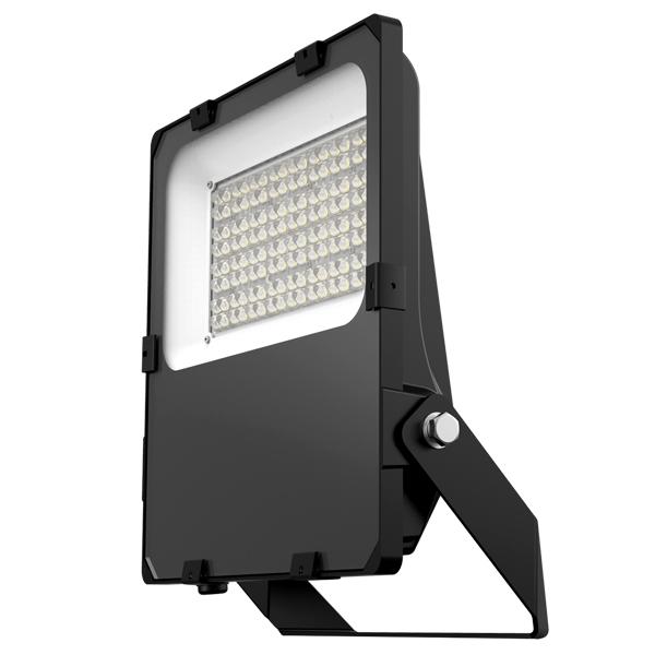 Frankly Plus Floodlight 100W 4000K Black 605 Optic